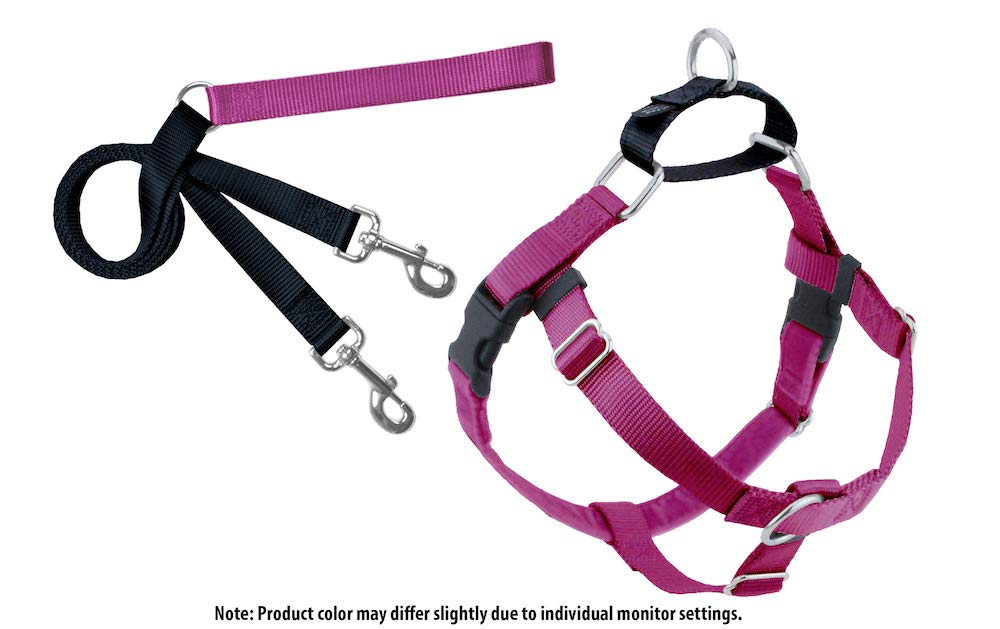 2 Hounds Design Freedom No-Pull Dog Harness and Leash, Adjustable Comfortable Control for Dog Walking, Made in USA (Medium 1'') (Raspberry)