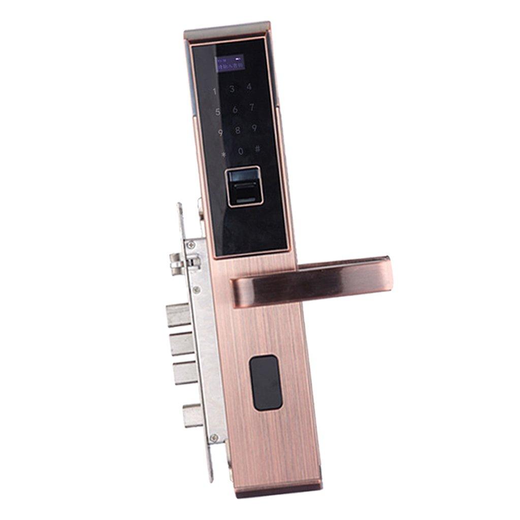 Dovewill 5 in 1 スマート ドアロック 指紋 ドアロック ホーム セキュリティ 全3色 ローズゴールド B078PM6GS2  ローズゴールド