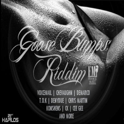 Goose Bumps Riddim [Explicit]