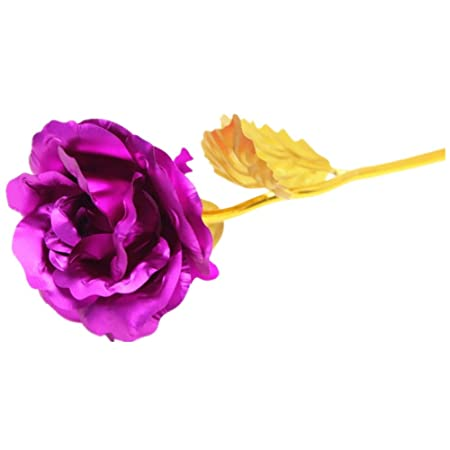 Sweetly carnation mothers day gift 24k gold plated decoration sweetly carnation mothers day gift 24k gold plated decoration golden flowers pretty rose for birthday mightylinksfo