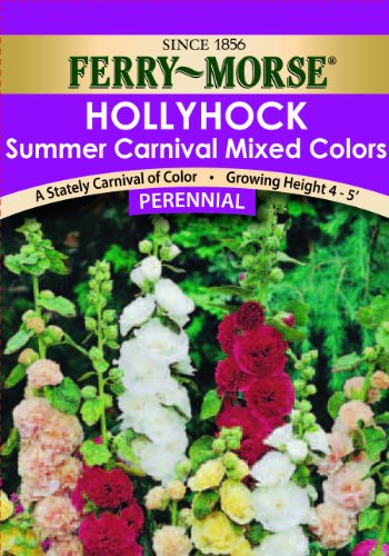 Ferry- Morse Hollyhock Summer Carnival Mixed Colors Flower Seed