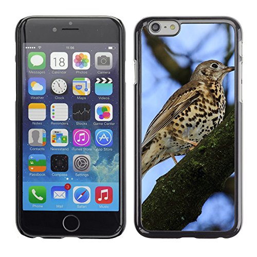 "Premio Sottile Slim Cassa Custodia Case Cover Shell // F00028578 oiseau tacheté // Apple iPhone 6 6S 6G 4.7"""