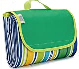 Deerbird® 57''79'' Picnic Blanket, Compact Waterproof and Sandproof Foldable Beach Blanket&Mats for Family Picnicking Garden Travel Camping (Green Stripe)