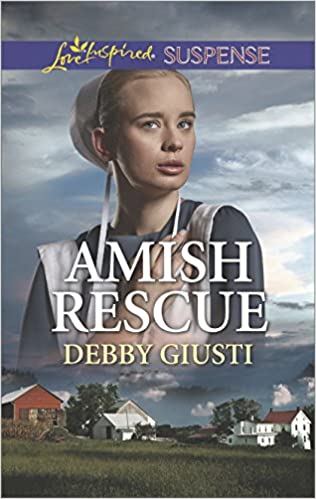 Image result for amish rescue debby giusti