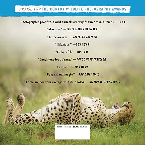 Wild-and-Crazy-Photos-from-the-Comedy-Wildlife-Photography-Awards