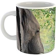 Westlake Art - Coffee Cup Mug - Elephant Elephants - Modern Picture Photography Artwork Home Office Birthday Gift - 11oz (x9m-61f-dc2)