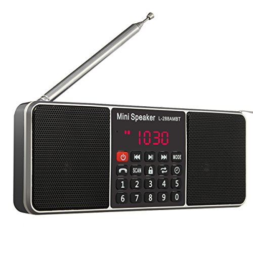 Wireless Radio Speaker,ELEGIANT Portable Multifunction Dual Channel Digital AM/FM Radio Media Wireless Speaker MP3 Music Player Support TF Card/USB Disk with LED Screen Display, Clock Function (Transmitter Antenna Am)