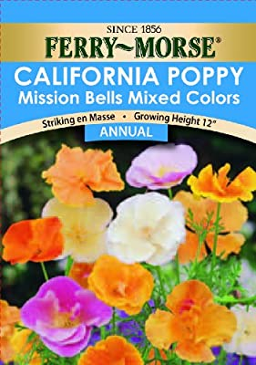 Ferry-Morse California Poppy Mission Bells Seeds (Annual)