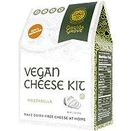 Druids Grove Vegan Mozzarella Kit (Nondairy Cheese) ☮ Vegan ⊘ Non-GMO ❤ Gluten-Free ✡ OU Kosher Certified