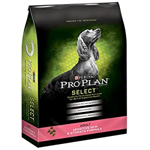 Purina Pro Plan Focus Dog Food