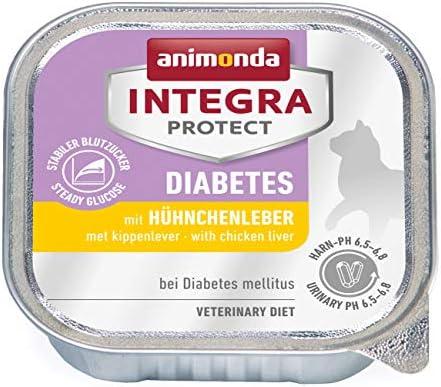 comida para diabetes mellitus
