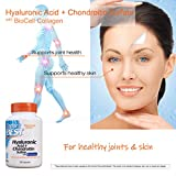 Doctor's Best Hyaluronic Acid with Chondroitin