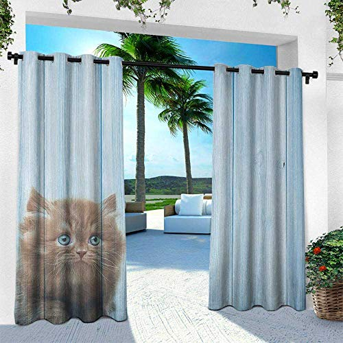 Animal, for Patio Light Block Heat Out Water Proof Drape,Cute Kitty Alone on Rustic Vivid Background Kids Childish Artsy Print Photograph, W96 x L96 Inch, Caramel Blue