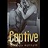 Captive (Fire on Ice Book 2)