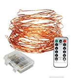 Submersible LED Fairy String Light with Remote Control Dimmable Battery Operated 33ft Copper Wire String for Outdoor Indoor, Patio, Wedding, Party, Christmas Decoration(Warm White)