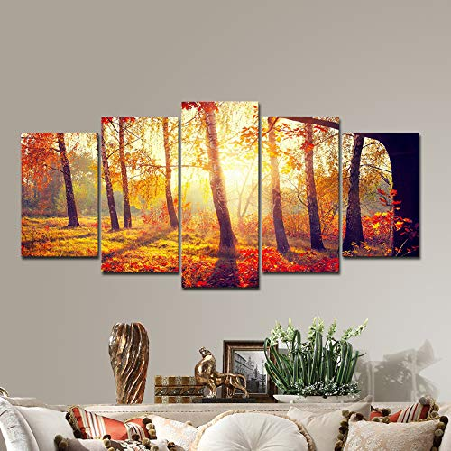 Pyradecor 5 Piece Large Canvas Prints Wall Art Orange Trees Matinal Autumn Forest Pictures Paintings for Living Room Bedroom Home Decorations Modern Nature Sunset Landscape Artwork