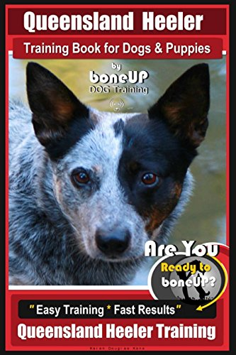Queensland Heeler Training Book for Dogs & Puppies by Bone Up Dog Training.: Are You Ready to Bone Up? Easy Training * Fast Results Queensland Heeler Training