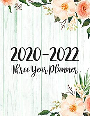 2020-2022 Three Year Planner: 3 Year Monthly Planner ...