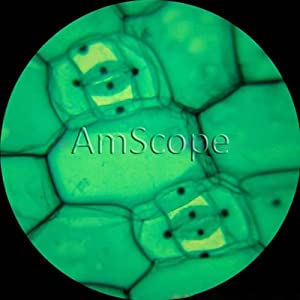 AmScope Optical Glass Lens All-Metal LED Compound Microscope, 6 Settings 40x-1000x, Portable AC or Battery Power