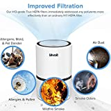 LEVOIT H13 True HEPA Filter Air Purifiers for