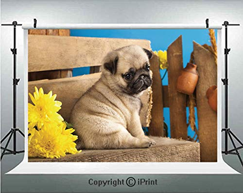 Pug Photography Backdrops Adorable Puppy Photography with Sad Dog and Wildflowers on a Park Bench,Birthday Party Background Customized Microfiber Photo Studio Props,10x6.5ft,Pale Brown Yellow Blue