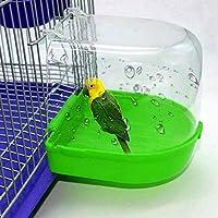 Honey MoMo - Bañera para pájaros, Accesorios para pájaros y Loros ...