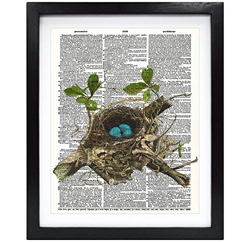 Susie Arts 8X10 Unframed Robin Bird Eggs in The nest Housewarming Gift Nursery Print Upcycled Vintage Dictionary Art Print Book Art Print Home Decor Wall Art V181