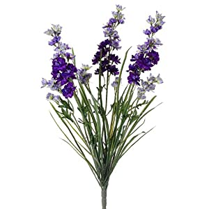 "24.5"" Delphinium Bush x3 Purple (Pack of 12) 23"