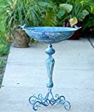 Zaer Ltd. Pedestal Style Birdbath (Blue) Review