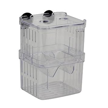 ReFaXi claro acuario peces tanque de cría Divisor Caja Aislamiento para colgar obtentor incubadora: Amazon.es: Productos para mascotas