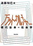 フラット・カルチャー―現代日本の社会学