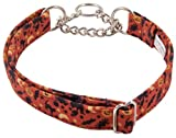 Country Brook Design Everything Halloween Designer Half Check Dog Collar - Extra Large