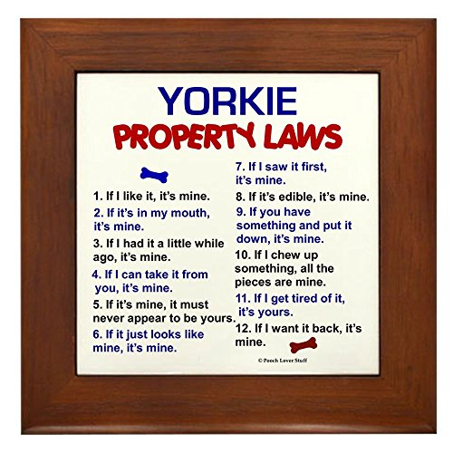 Yorkie Property Laws Framed Tile