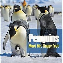 Penguins - Meet Mr. Flappy Feet: Penguin Books for Kids (Children's Bird Books)