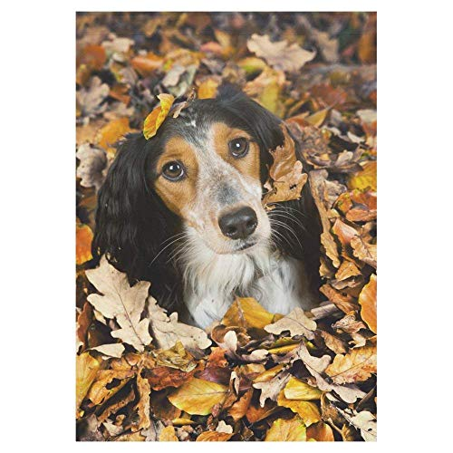 Pingshoes Autumn Dog Polyester Garden Flag House Banner 12 x 18 inch, Fall Leaves Decorative Flag for Wedding Party Yard Home Outdoor Decor