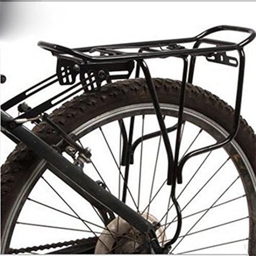 Interior Bike Carrier - 6