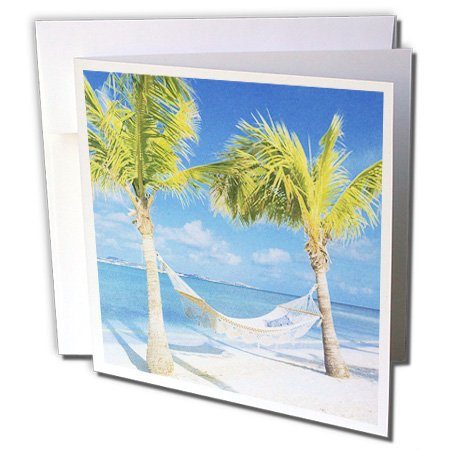 3dRose Palm Trees and Hammock With Ocean - Greeting Cards, 6 x 6 inches, set of 6 (gc_35338_1)