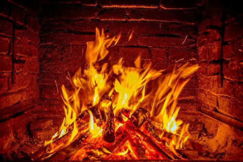 Home Comforts LAMINATED POSTER Wood Flame Fireplace Fire Barbecue Poster 24x16 Adhesive Decal by Home Comforts