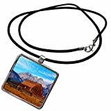 3dRose Danita Delimont - Mountains - Wyoming, Grand Teton NP, Barn, Teton Mountains - US51 FZU0000 - Frank Zurey - Necklace With Rectangle Pendant (ncl_97300_1) offers