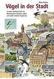 Vögel in der Stadt: In enger Nachbarschaft mit Mauerseglern, Spatzen, Falken und vielen anderen Vogelarten