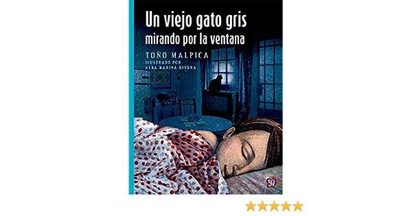 Un viejo gato gris mirando por la ventana (A La Orilla Del Viento) (Spanish Edition): Toño Malpica, Alba Marina Rivera: 9786071622419: Amazon.com: Books