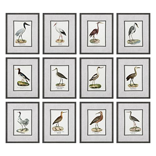 Set of 12 Elegant Water Bird Prints | Sea Shore Wall Art Coastal Beach by My Swanky Home