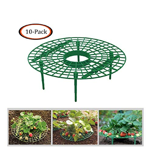 JinJin 10pcs Strawberry Holder Supports Keeping Fruit Elevated to Avoid Ground Rot Handy Strawberry Supports for Your Garden Keep off Strawberries off Rot in The Rainy Days (10 PCS) ()