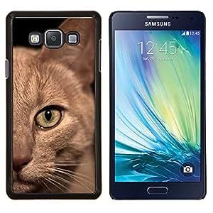 YiPhone /// Prima de resorte delgada de la cubierta del caso de Shell Armor - Gato birmano American Shorthair británico - Samsung Galaxy A7 A7000