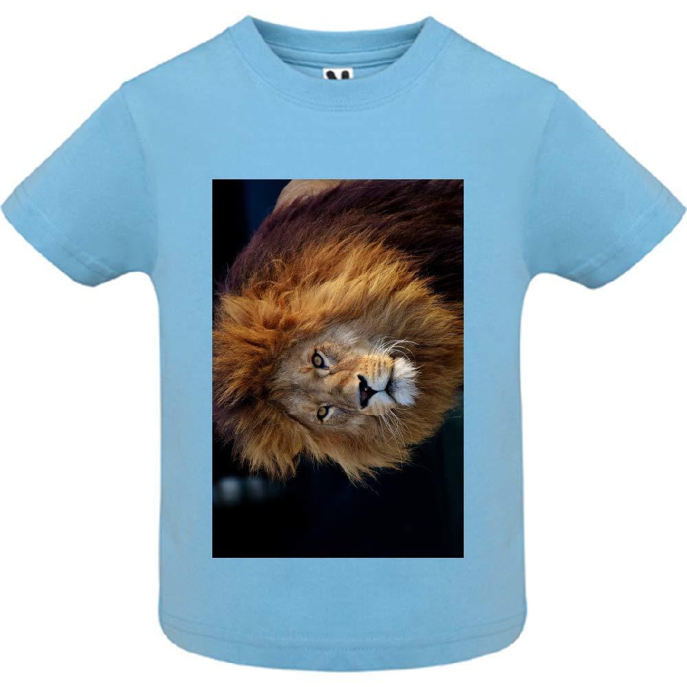 T-Shirt - Manche Courte - Col Rond - Tete de Lion 22 - Bébé Garçon - Bleu - 6mois