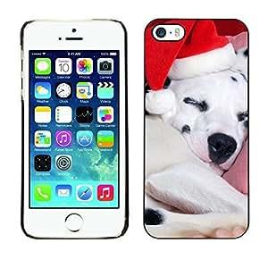 YOYO Slim PC / Aluminium Case Cover Armor Shell Portection //Christmas Holiday Cute Holiday Puppy Dog 1135 //Apple Iphone 5 / 5S