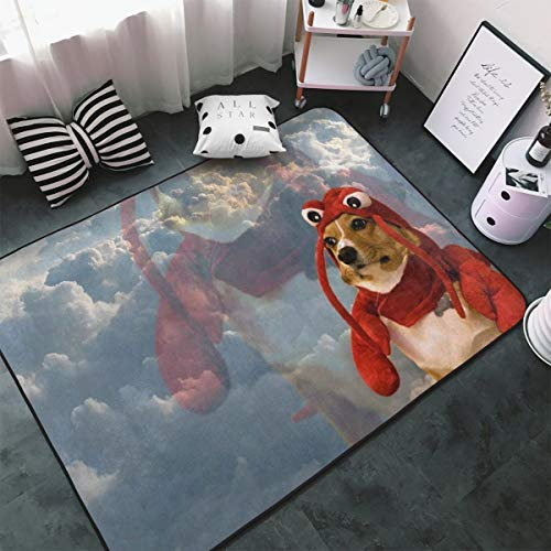 Dog In Lobster Costume Area Rugs Home
