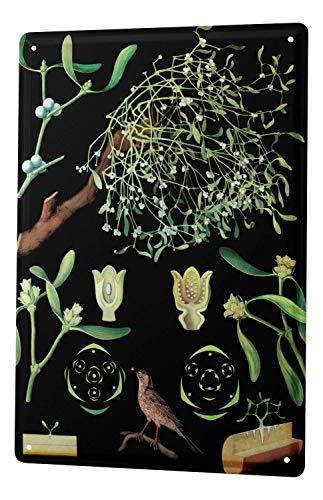 - Flower Shop Mistletoe Novelty Metal Sign for Home Decor Tin Sign for Man Women Cave
