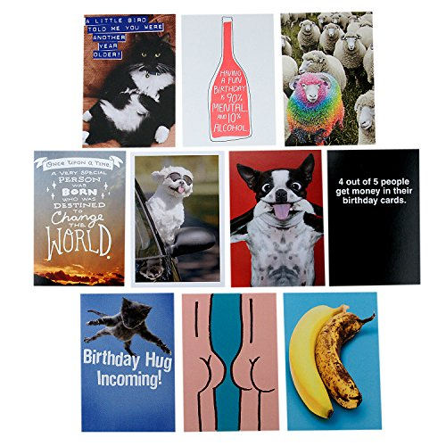 Hallmark Shoebox Funny Birthday Cards Assortment (10 cards with Envelopes) ()