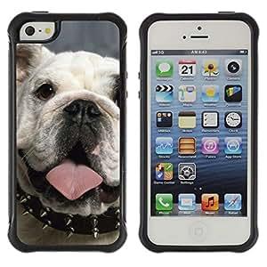 Suave TPU GEL Carcasa Funda Silicona Blando Estuche Caso de protección (para) Apple Iphone 5 / 5S / CECELL Phone case / / Punk English Bulldog London Icon Dog /